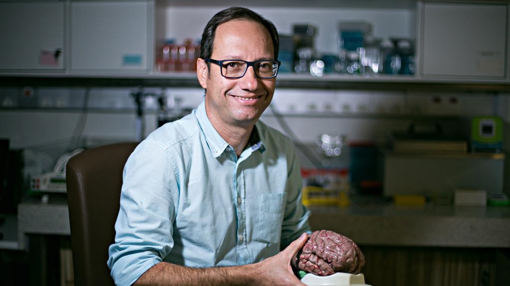 Os criadores de cérebros