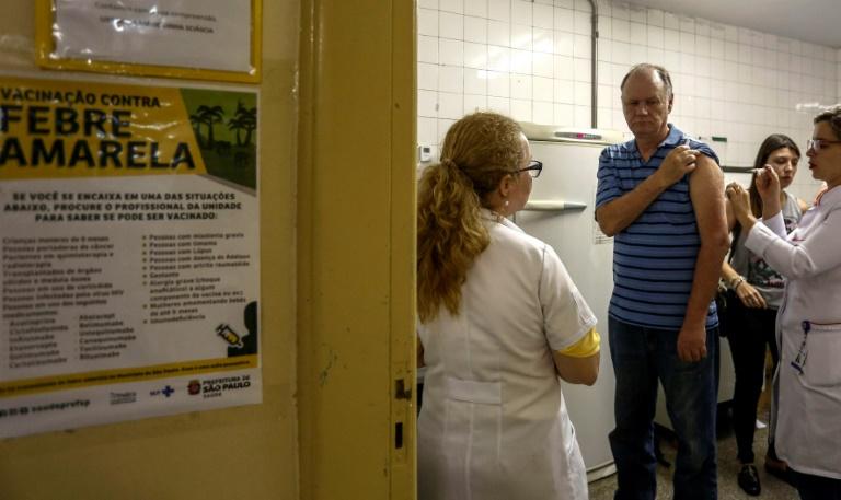 Governo de São Paulo reconhece surto de febre amarela