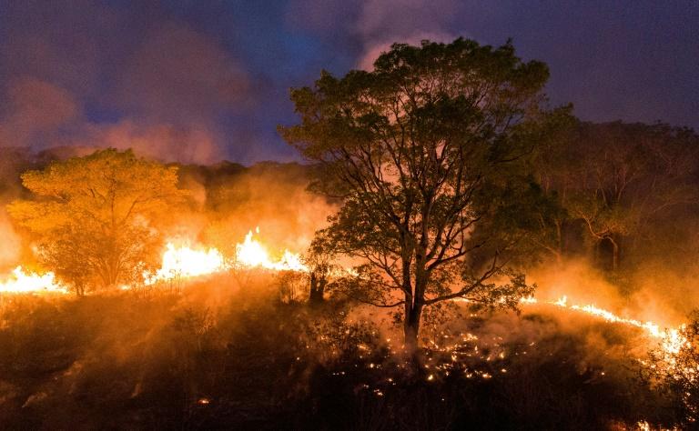 Pantanal bate recorde de focos de incêndio em setembro, diz Inpe