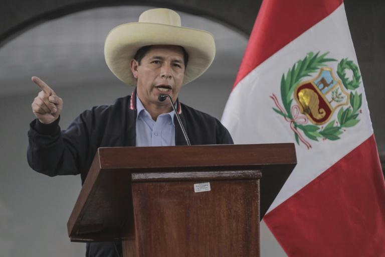 "Pedro Castillo descarta copiar ""modelos"" estrangeiros no Peru"