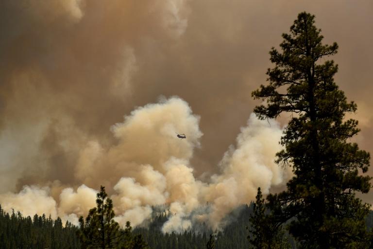 Incêndios florestais no hemisfério norte provocaram recorde de emissões de CO2