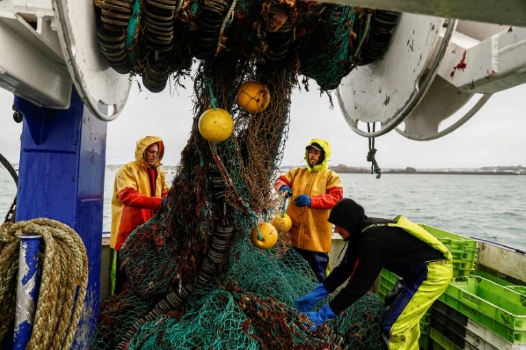 Reino Unido aceita 12 pedidos franceses de pesca em suas águas territoriais