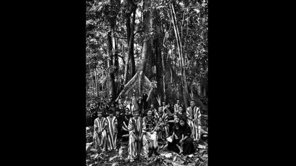 """Exposição """"Amazônia"""", de Sebastião Salgado, é um pedido de socorro à comunidade internacional"""
