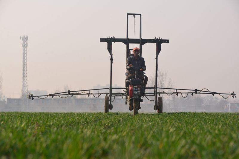 Setor de fertilizantes especiais do Brasil espera crescimento de 24% em 2021