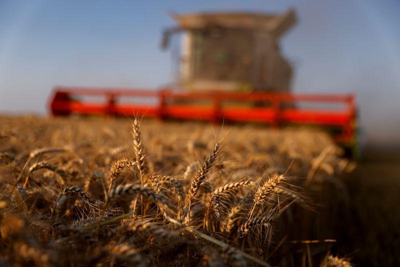 Importação de grãos com quebra de safra no Brasil aperta logística de adubos, diz Anda