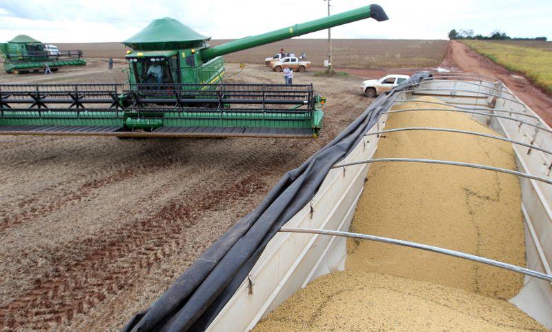 Exportadores dos EUA vendem 132 mil t de soja à China para 2021/22, diz USDA