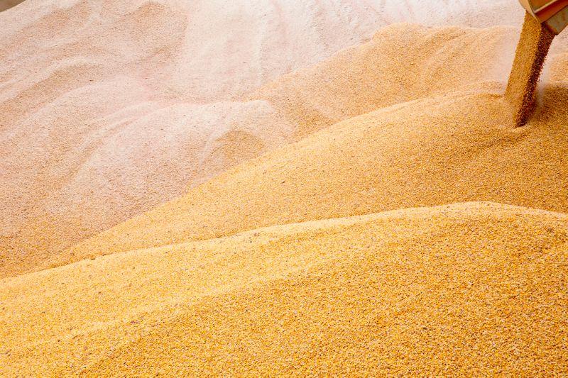 Estoques de grãos da Ucrânia somam 24,2 mi t até 1º de setembro