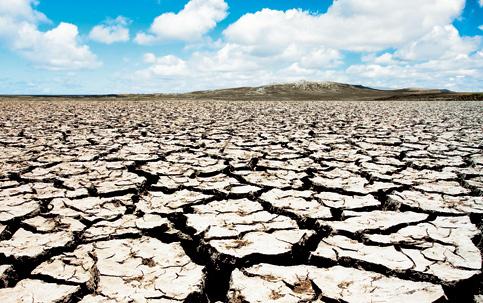 Resultado de imagem para seca no semiarido nordestino